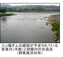 八ッ場ダムの建設が予定されている吾妻川(手前)と利根川の合流点