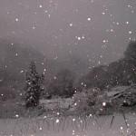 水没予定地に降る雪