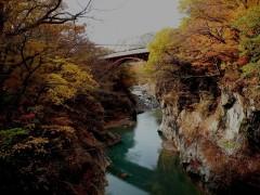ダムに水没する名勝・吾妻渓谷上流部。 旧国道の八ッ場大橋と吾妻線の鉄橋。