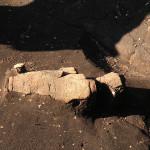 林地区・上原Ⅰ遺跡で出土した縄文土器(2012年11月14日)