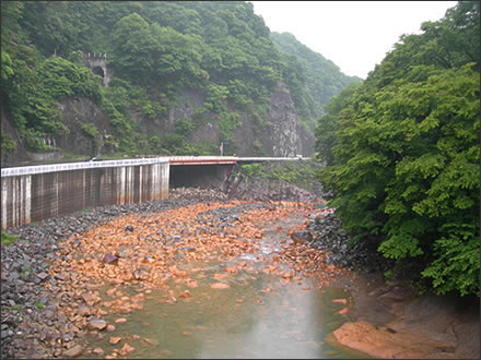 吾妻川(2005年5月)