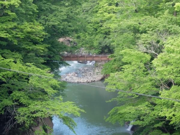 橋げたを外された滝見橋 2014年6月23日撮影。