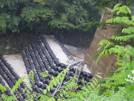 滝の水が堰の上流へshuku