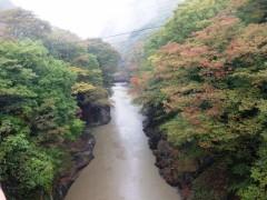 大雨と八ッ場大橋の紅葉 (2)shuku2