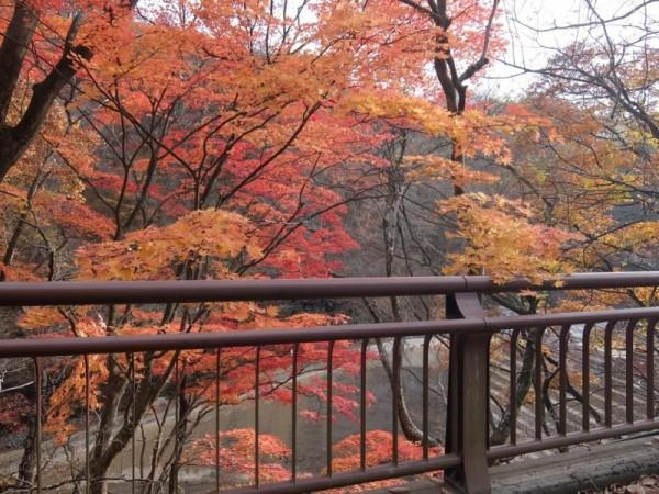 ダムサイト予定地上流側shuku