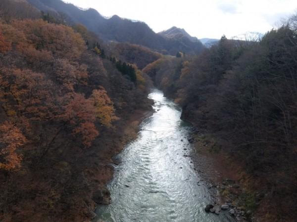 千歳橋から上流を望むshuku