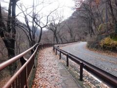 閉鎖日の国道shuku