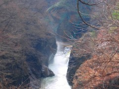 仮排水路から噴き出る水はに緑色に濁っていたshuku