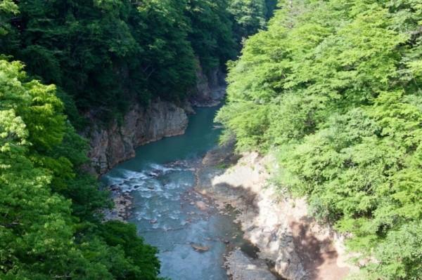 吾妻渓谷下流側.jpgs