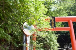 川原湯神社.jpgs