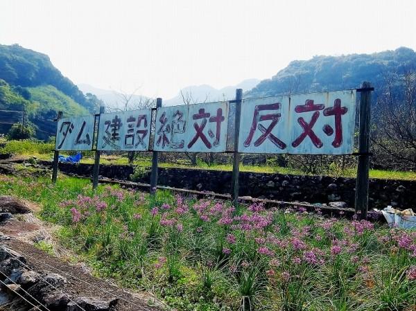 ダム建設反対の看板 (2)