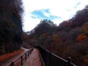 松谷トンネル付近