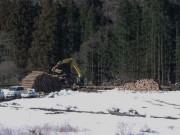 伐採木材を積む (2)