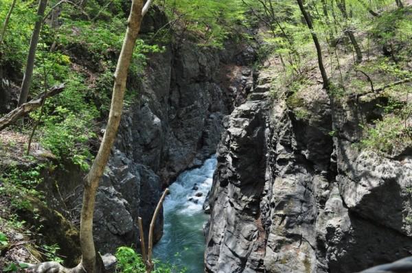 鹿飛橋から見た渓谷