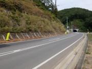 付け替え国道法面(石畑)shuku