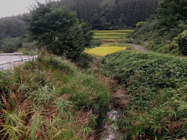 浅川ダム上流側