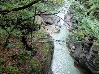 吾妻渓谷鹿飛び橋付近