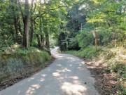 上湯原への道
