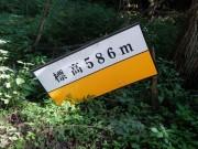 DSCF8646 (2)