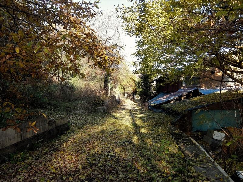 川原畑の旧道